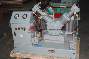 Screw Nitrogen Blast Compressor for Tires